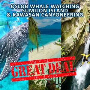 Oslob Whale, Sumilon Island and Kawasan Canyoneering