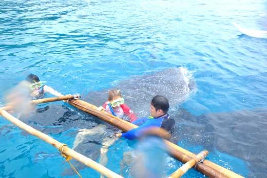 Oslob Whale Tumalog Simala