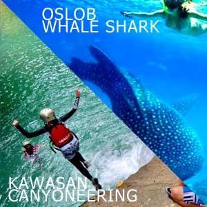 Oslob Whale Shark and Kawasan Canyoneering