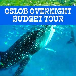 oslob overnight budget