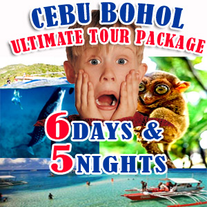cebu and bohol tours