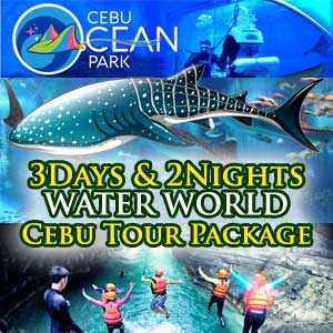 cebu oceanpark canyoneering whale shark tour